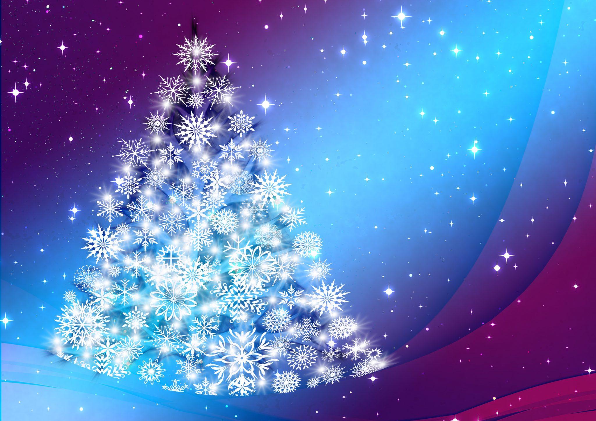 Comment réussir la préparation de votre arbre de Noël ?